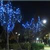 《横山公園》クリスマスイルミネーション!