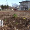 宅地の開墾