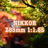 【作例祭り】Z 85mm f/1.8Sで紅葉を撮ってきました