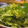 いつもより山菜いろいろ 神戸三ノ宮のお料理は安東