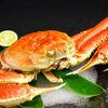 【石川県】日本海のカニが食べたい(1)