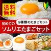 卵かけご飯の決め手はやっぱり卵?いや醤油?それとも