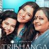 感想評価)インドの悪しき習慣に切り込んだ…Netflix映画トリバンガ~踊れ艶やかに~(感想)