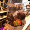 チョコレート店ひしめくベルギー♪