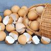 仮想通貨の取引は「取引所を分散」して取引しよう!卵は一つのカゴに盛るな!!