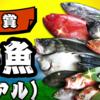 マグログランプリの副賞2万円相当の鮮魚とは果たして
