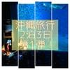 【美ら海水族館】沖縄レンタカー無し旅行 2泊3日レポート!①