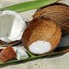 フィリピン人だけが知る!美味しいココナッツの見分け方