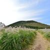 済州島(チェジュ島)秋のフォトスポット #ススキの揺れる「アックンタランシオルム」