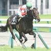 ダノンマジェスティ |木曽川特別 1着 和田竜二騎手「右回りはどうかとも思いますが、さらに良くなってきそうです」