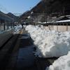 【大雪の山梨・久留里線完乗】2014年冬