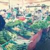 タンジュンブンガの市場で2週間ぶりの買い物、観葉植物も買いました!