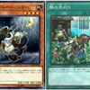 【考察:CODE OF THE DUELIST】