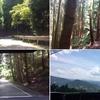 ロードバイクで大山崎にあるパン屋【パヴェナチュール】へ行って来ました。