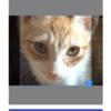 React Firebase入門 FirebaseStorageのファイル圧縮してアップ
