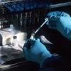 武漢研究所からのウイルス流出説が高まる米国