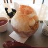 【奈良かき氷】 春日大社カフェ・ショップ 鹿音(KAON) さん  (冷たいかき氷)