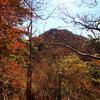 【御正体山】道志山塊の最高峰が秋真っ盛り!石割山までの縦走の末に見る山中湖と富士山を掴まえる山旅