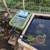 庭に池をつくる(⑨ろ過装置編その2)