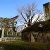 京都まち歩き#6(豊国神社、新日吉神宮)
