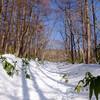 冬の安達太良山へ『ほんとの空』を見に行こう。