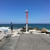 【Byronbay】3件目WWOOF4日目。バイロンのビーチに行きました。