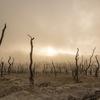 経済成長を犠牲にしても環境対策できるか。