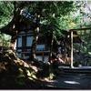 国幣中社・出雲大神宮(亀岡市)の秋風景 part8