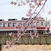 春の日光路(6050系)
