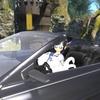 FF14プレイ日記。FF15コラボと憧れの黒塗りの高級車ゲットの話