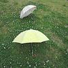 『日傘はいかがですか。』