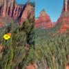 【WebVR日記3】A-Frameに入門。画像を表示。<a-image>使う。
