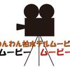 ペットホテルわんわん柏 朝夕食後の遊び・健康チェック(わんわん柏)