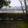 雨で予定変更の… 誕生日(^_^;)