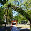 密かな・・・そして最強のパワースポット【筑摩神社】