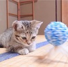 【神奈川】レンタル仔猫と過ごせる宿