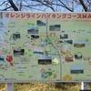 【紅葉ラン】美浜町オレンジラインを走ってきました【トレイルも】