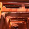 京都の夏は暑い。冷たくて旨いおすすめの蕎麦【伏見稲荷大社と三味洪庵本店】