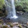 新緑が眩しい足柄の夕日の滝