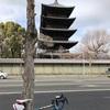 2018 恒例の京都