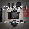 【おすすめカメラグッズ】CanonユーザーがSONYのミラーレスカメラ a7 II と一緒に買ったモノ【必需品】