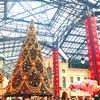 クリスマス雰囲気たっぷり😊週末のディズニー💓