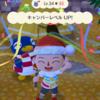 ポケットキャンプにてクリスマスイベント開催中(≧∇≦)b