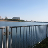 谷津干潟(ラムサール条約登録地)