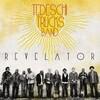 音楽の楽しい連鎖(2021)~>放て音玉矢<24>|『Tedeschi Trucks Band(テデスキ・トラックス・バンド)/Revelator』|2011年第54回グラミー賞「Best Blues Album」受賞!v^^