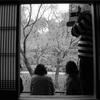 京都観光×モノクローム。一眼レフカメラで残した別世界。