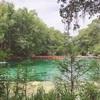 【夏のロードトリップ4日目】フロリダの州都タラハシーからspringめぐり