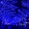1週間の反省 12/18~12/24 メリークリスマス! ~国立西洋美術館&青の洞窟~
