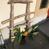 流木の傘立ての作り方 総工費0円