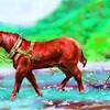 馬と共に農作業